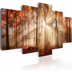 Billede - Forest Fog