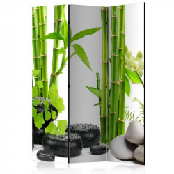 Skærmvæg - Bamboos and...