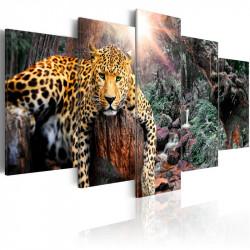 Billede - Leopard Relaxation