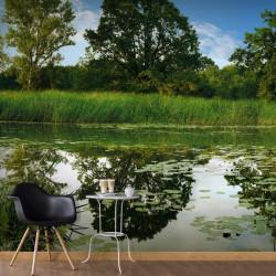 Fototapet - The Magic Pond