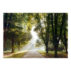 Fototapet - Morning Walk