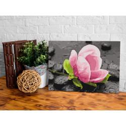 DIY lærred maleri - Pink...
