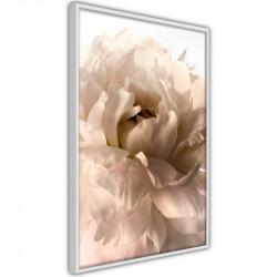Plakat - Bloom