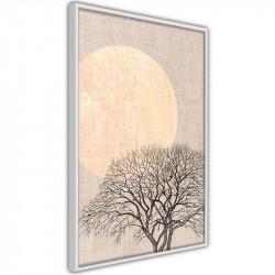 Plakat - Tree in the Morning