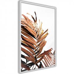 Plakat - Copper Palm