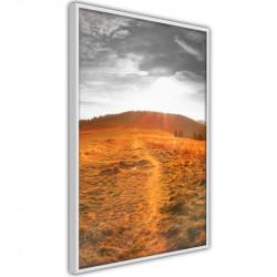 Plakat - Prairie