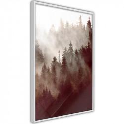 Plakat - Forest Fog