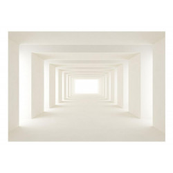 Fototapet - Into the Light