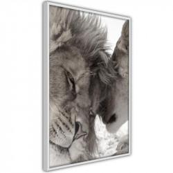 Plakat - Predatory Couple
