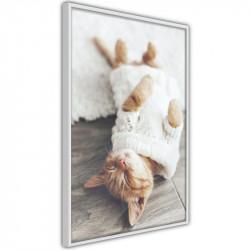 Plakat - Kitten Life
