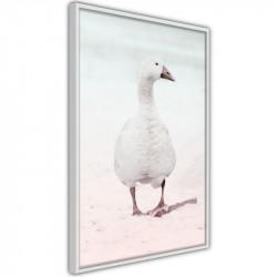 Plakat - Walking Goose