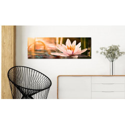 Billede - Beautiful Lotus