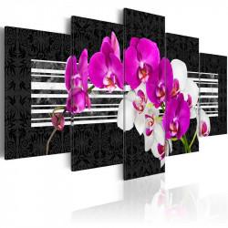 Billede - Modest orchids