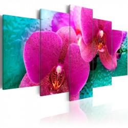Billede - Exotic orchids