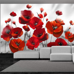 Fototapet - Poppies in the...