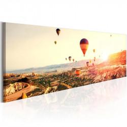 Billede - Balloon Rides