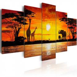 Billede - Hot Safari