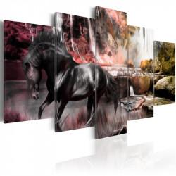 Billede - Black horse on...