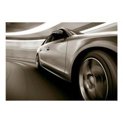 Fototapet - Speed and Elegance