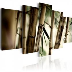 Billede - Asian bamboo forest