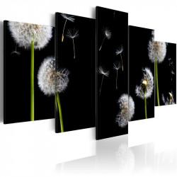 Billede - Dandelion-...