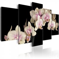 Billede - An orchid on a...