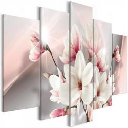 Billede - Magnolia in Bloom...