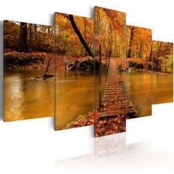 Billede - Redness of autumn