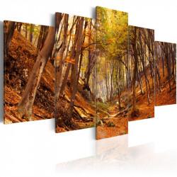 Billede - Orange autumn