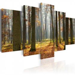 Billede - A nice forest...