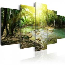 Billede - Forest river