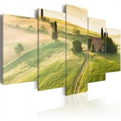 Billede - Green Tuscany