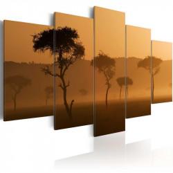 Billede - Fog over a savannah