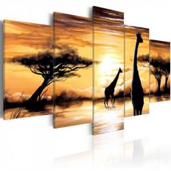 Billede - Wild Africa