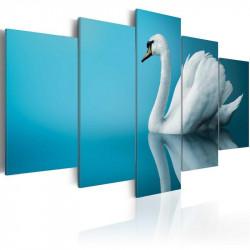 Billede - A swan in blue