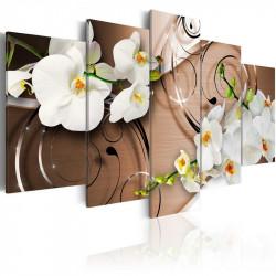 Billede - Ivory orchids