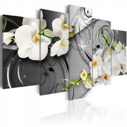 Billede - Milky orchids