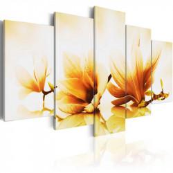 Billede - Amber magnolias