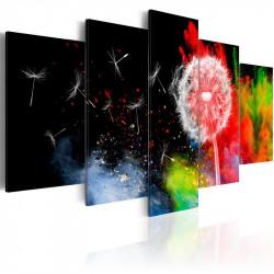 Billede - Festival of Colours