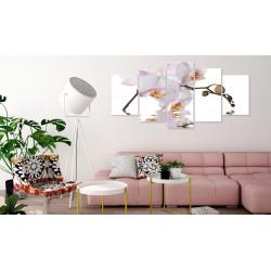 Billede - Delightful Orchid...