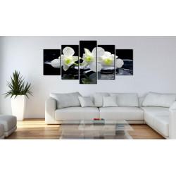 Billede - Melancholic orchids