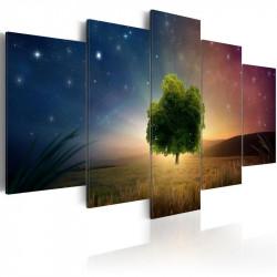 Billede - Starry Nights