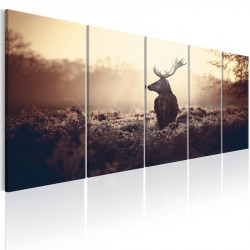 Billede - Stag in the...