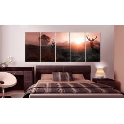 Billede - Sun on the Horizon I