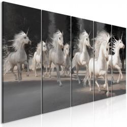 Billede - Unicorns Run (5...