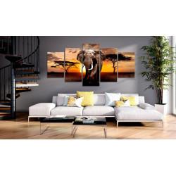 Billede - Elephant Migration
