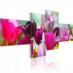Billede - Charming red tulips