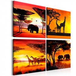 Billede - African Animals...