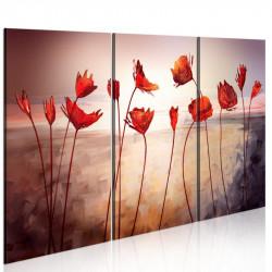 Billede - Bright red poppies