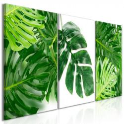 Billede - Palm Leaves (3...